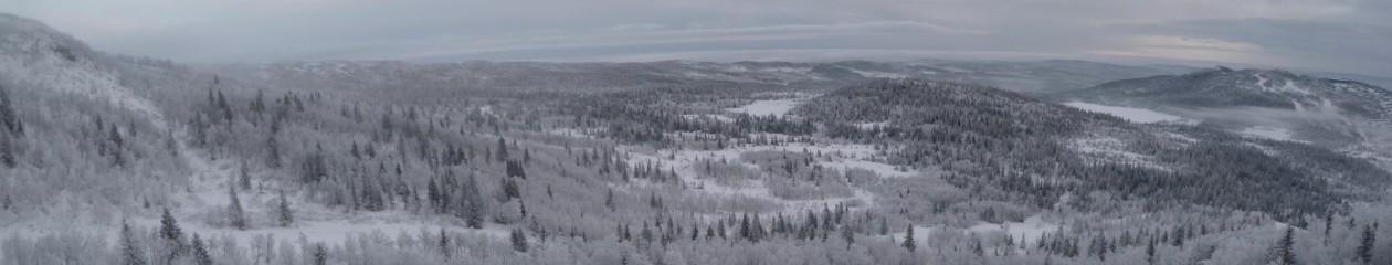 Snowskate Sverige!